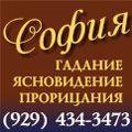 rusrek.com: Sofia 929 248-8336