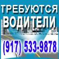 rusrek.com: СDL 1310-47