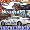 rusrek.com: Seagull