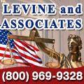 rusrek.com: Levin and Associates