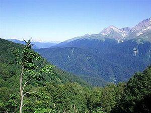 снять дом в Катскильских горах