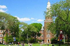 Как выбрать колледж в Нью-Йорке